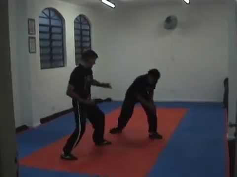 Poderosas Técnicas de Kung Fu com o Mestre Gomes Neto