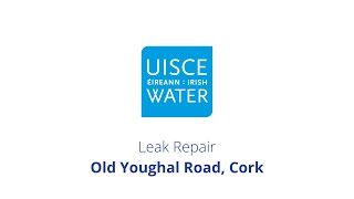 Video Thumbnail: #FixingLeaks | Old Youghal Road, Cork