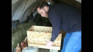 Large plywood chicken feeder