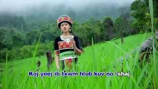 getlinkyoutube.com-Hmong New Song 2016 nkauj hli vwj & tub ntxawg vaj