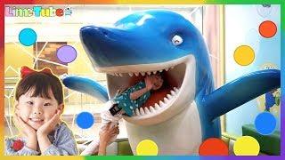 getlinkyoutube.com-라임이의 뽀로로 키즈카페 테마파크 어린이 놀이터  Pororo Indoor Playground Fun for Kids   LimeTube & Toy 라임튜브