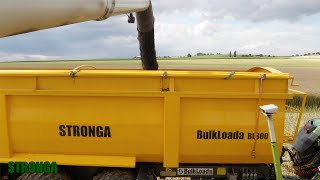 Stronga BulkLoada 800 agricultural trailer - High capacity rapeseed harvest
