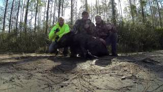 getlinkyoutube.com-Hog Hunting Aint Pretty
