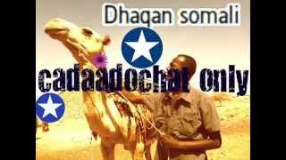 getlinkyoutube.com-xasan & sahro the best song ee isla qadan kaban
