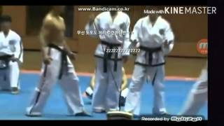getlinkyoutube.com-[티비플]북한의 살인무술 태권도