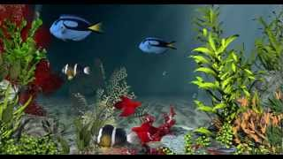 getlinkyoutube.com-Aqua Coral Reefs 3D