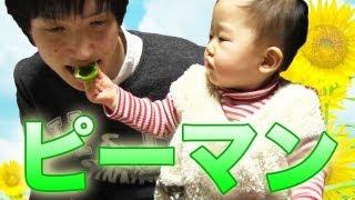 getlinkyoutube.com-感情を失っていない次男と、姪っ子のピーマン / Baby with green pepper.