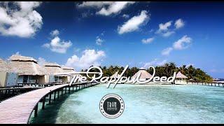 getlinkyoutube.com-2 hours Real & Dope Hip Hop Music-Long Playlist