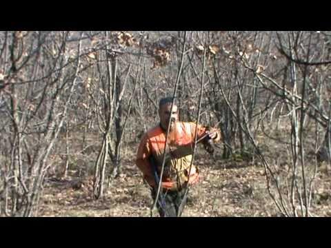 Κυνήγι Μπεκάτσας 2/Chasse à la Bécasse /HUNTING WOODCOCK/CACCIA BECCACCIA/25-1-2011