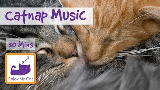 30 Minutes of Catnap Music! Calm Down your Cat and Send them to Sleep