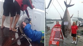 getlinkyoutube.com-Fisherwoman catches world record 411.6kg TUNA worth $2m or 1769 tins after 4hr battle - New Zealand