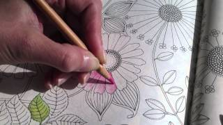 getlinkyoutube.com-Secret Garden, Colouring a Flower, part 2 (how to)