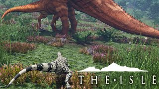 getlinkyoutube.com-The Isle - TALL GRASS PREY STALKING, RAPTOR + SUCHOMIMUS (Funny Moments Gameplay)