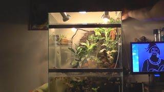 getlinkyoutube.com-Крышка для аквариума своими руками