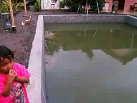 Kolam Ikan Pemancingan | lomba mancing ~ ikan lele terbesar