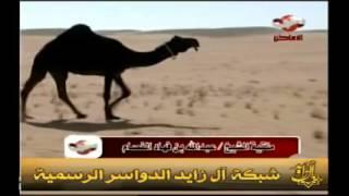 getlinkyoutube.com-أجمل منقية ابل , منقية عبدالله الفصام , شيلة جفران المري