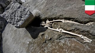 Archaeologists find skeleton of Pompeii man squashed by rock - TomoNews