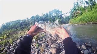 getlinkyoutube.com-Casting Hampala. Sungai Banjaran-Logawa. Purwokerto(2)