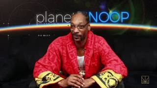 Planet Snoop: Unexpected Catfish