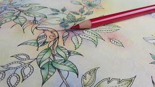 getlinkyoutube.com-Colouring Secret Garden - A garland in pastels