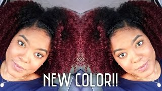 getlinkyoutube.com-How-To: Dark Red Natural Hair