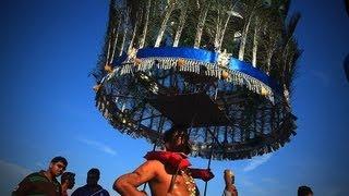getlinkyoutube.com-Thaipusam 2013 at Batu Caves - Dancing With Kavadis