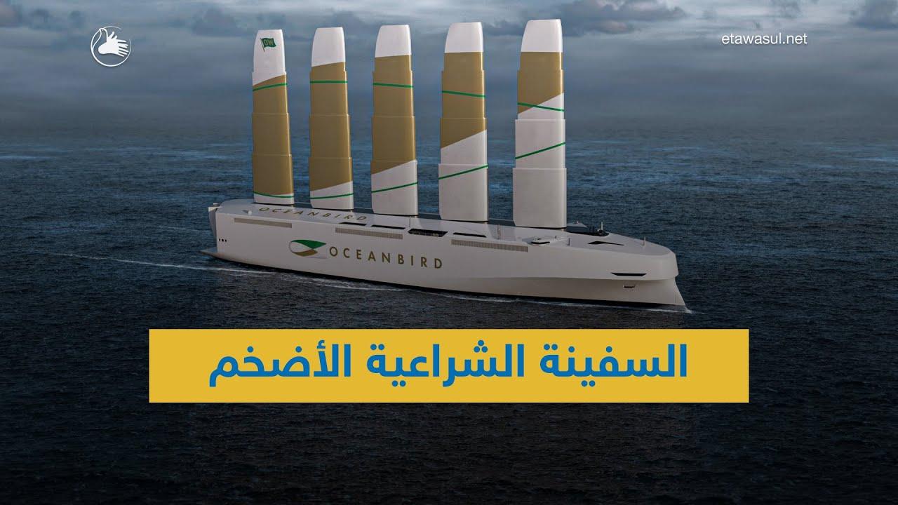 السويد تُبني أكبر سفينة شراعية في العالم!
