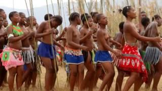 getlinkyoutube.com-Swaziland Reed Dance -