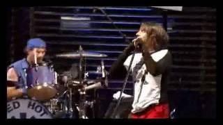getlinkyoutube.com-Red Hot Chili peppers Live at Slane Castle Full Concert