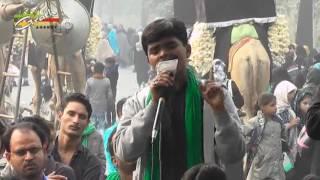 getlinkyoutube.com-Anjuman Akbaria Manihari   Juloos-e-Amari 1438-2016   Managed By Anjuman Asgharia Qadeem Amhat