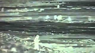 """getlinkyoutube.com-WIKILEAKS -VIDEO-""""under tree"""""""