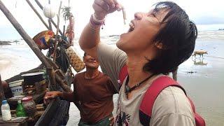 getlinkyoutube.com-กินปลาดิบพม่า eat myanmar sushi