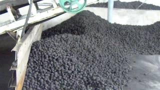 getlinkyoutube.com-Charcoal briquette drying line/briquettes belt dryer