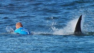 Surfista australiano sobrevive a ataque de tiburón