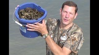 getlinkyoutube.com-Roadtrip crayfishing strawberry reservoir Utah and crayfish boil