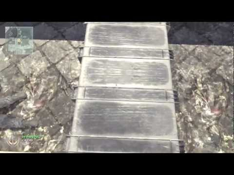 MW2 Glitches - On Top Of Invasion Building | PS3, Xbox 360, PC