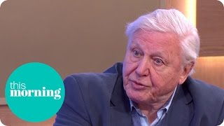 Sir David Attenborough Comments On Cecil The Lion Killing | This Morrning