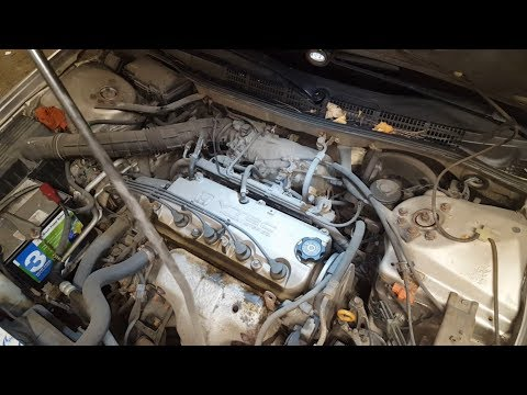 Honda Accord 99 замена прокладки клапанной крышки cover gasket replacement