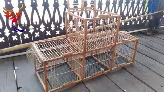 getlinkyoutube.com-How To Make A Bird Trap Easily That Work 100% (Cara Membuat Perangkap Burung)