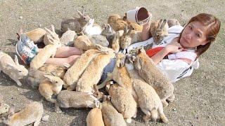 getlinkyoutube.com-Girl Gets Eaten by Hungry Bunnies! The Rabbit Island Challenge!