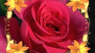 getlinkyoutube.com-Fondos para bodas III - Backgrounds for weddings ( The Garden)