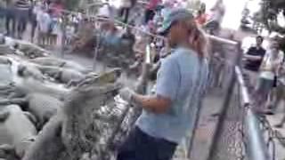 getlinkyoutube.com-تمساح يأكل يد مدربه أثناء عرض عام وسط صراخ الجمهور