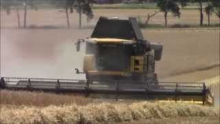 getlinkyoutube.com-New Holland cr9090 Harvesting barley.2014.wvm