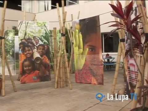 LALUPATV - Viva Guadua 2013 - exposicin Biblioteca Departamental Cali