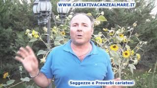 Proverbio Cariatese/Calabrese di Giovanni Crescente 003