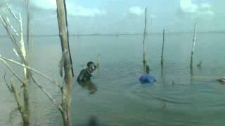 getlinkyoutube.com-ยิงปลาทะเลสาบสงขลา