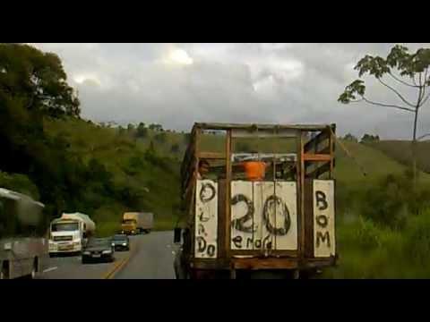 Caminhão de gado transportando crianças na Br 040