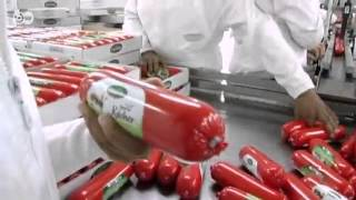 getlinkyoutube.com-مركز مغربي للتدريب على إنتاج اللحوم | نافذة على الاقتصاد العربي