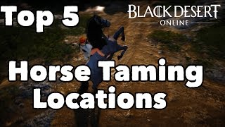 getlinkyoutube.com-Black Desert Online: Top 5 Wild Horse Taming Locations / Guide to Training + Shenanigans!