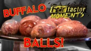 getlinkyoutube.com-Fear Factor Moments   Buffalo Testicles